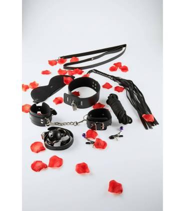 BDSM Starter Kit  ref: